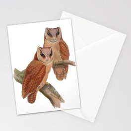 Pair of Owls Painting Stationery Cards