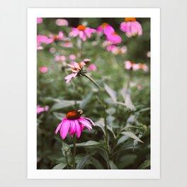 Buzzy Blooms Art Print