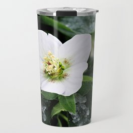 christmas rose Travel Mug