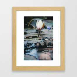 Catatonic waters Framed Art Print