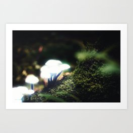 Silent Shrooms Art Print