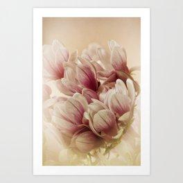 greetings from spring Art Print