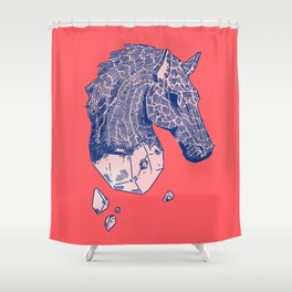 ♞✧ Shower Curtain