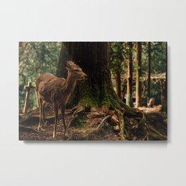 Nara Deer Metal Print