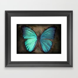 Vintage Butterfly Framed Art Print