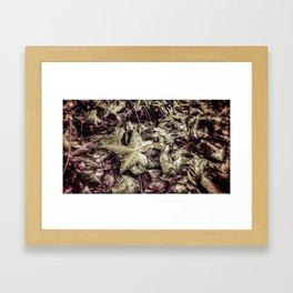Autumn leaves Framed Art Print
