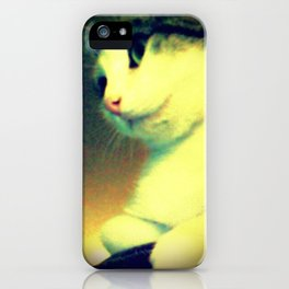 Maybelline iPhone Case
