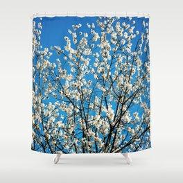 Spring Blossom VI Shower Curtain