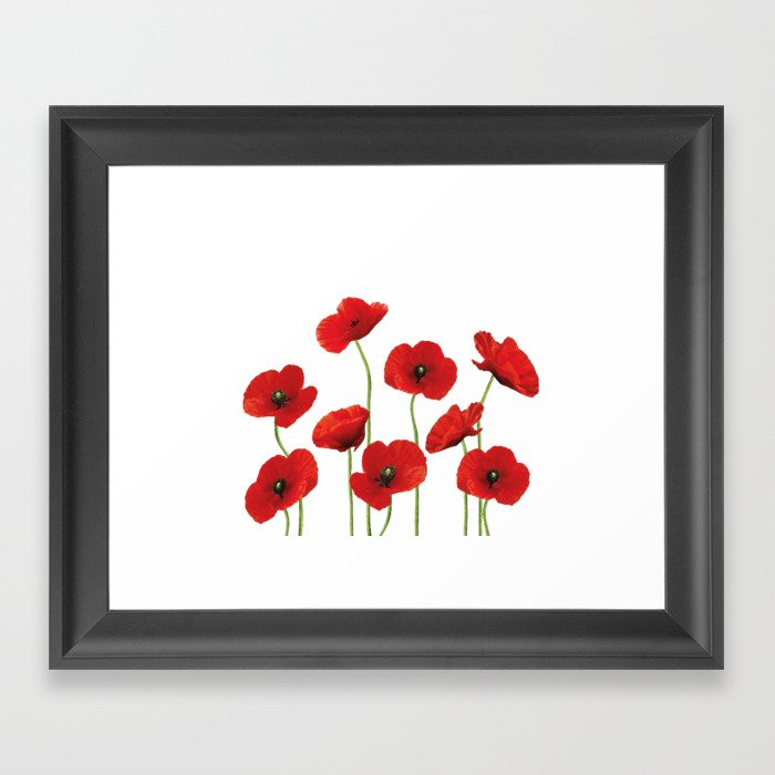Poppies Field white background Gerahmter Kunstdruck