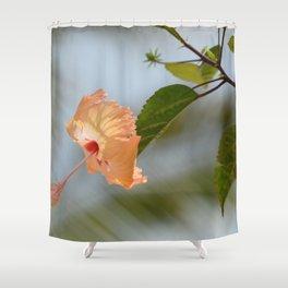hi-bliss-cus Shower Curtain