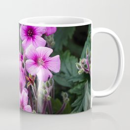 Beauty on The Rock Coffee Mug