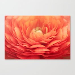 Soft Layers Canvas Print