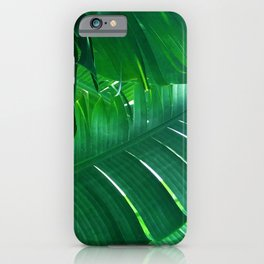 Magical Palm Leaves In Tropical Rainforest iPhone Case