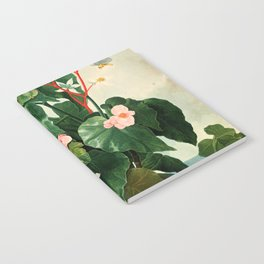 Pink Floral The Oblique-Leaved Begonias : Temple of Flora Notebook