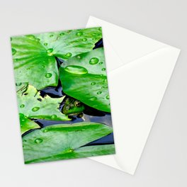Peek  A Boo frog Stationery Cards