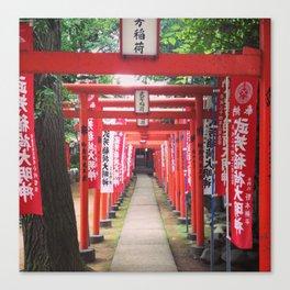 Japan Gates Canvas Print