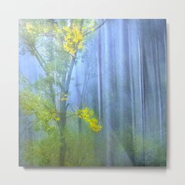 In the blue forest Metal Print