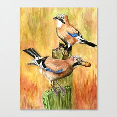 European Jays Canvas Print