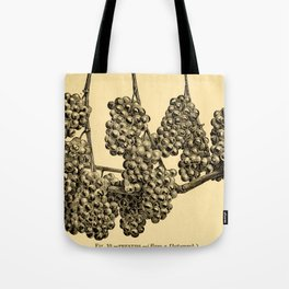 American grape growing and wine making (1885) Tote Bag