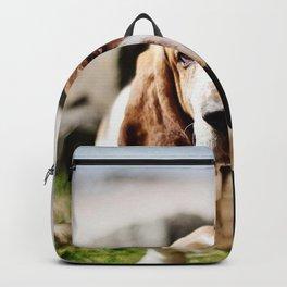 dog muzzle big-eared look Backpack