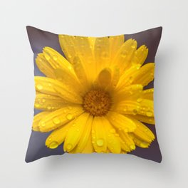 Yellow calendula under the rain Throw Pillow