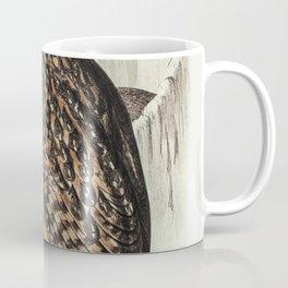 Chestnut-faced Owl (Strix castanops) illustrated by Elizabeth Gould (1804-1841) for John Goulds (180 Coffee Mug