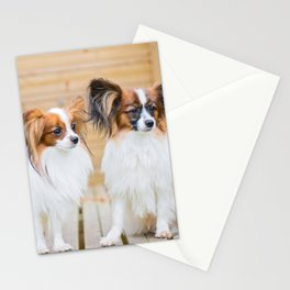 Outdoor portrait of a papillon purebreed dogs Stationery Cards