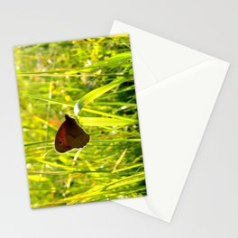 Morning Medow Stationery Cards