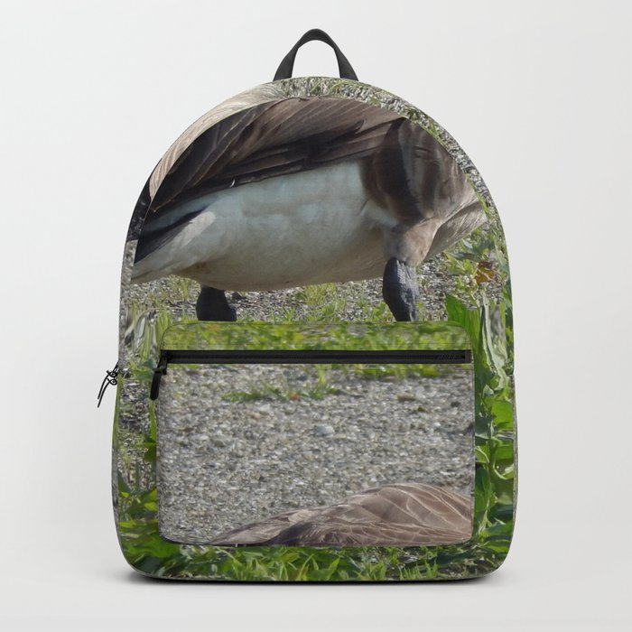 Canada Goose Backpack