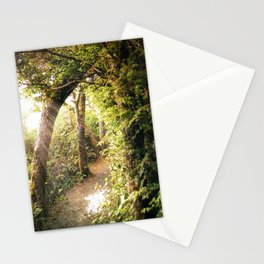 Sunlit Path Stationery Cards