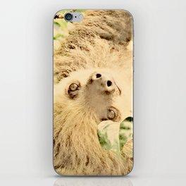 Vintage Animals - Sloth iPhone Skin