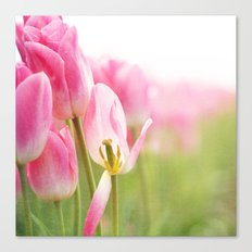 I Dream in Pink Canvas Print