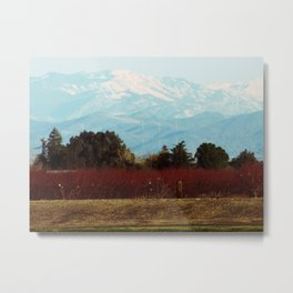 Central Valley, California Metal Print
