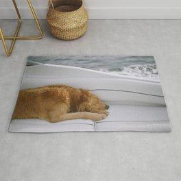 Dog by Brandon Hoogenboom Rug