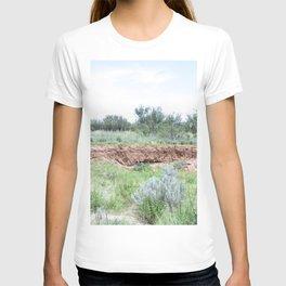 Clovis Site, No. 3 T-shirt