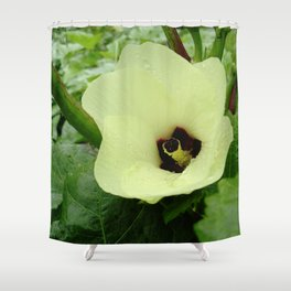 Velvet Butter Shower Curtain