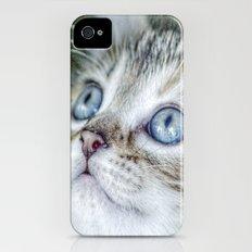 Wonder Slim Case iPhone (4, 4s)