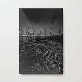 On the wrong side of the lake 12 Metal Print
