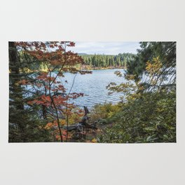 Splashes of Color Around Clear Lake Rug