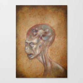 Medieval monster XIX Canvas Print
