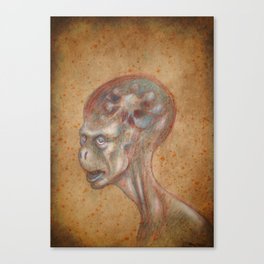 Medieval monster XIX Canvas Print