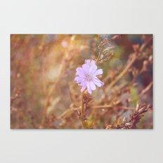 Lilac Charm Canvas Print