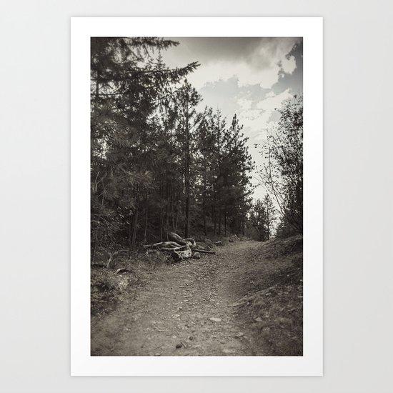 up the path Art Print
