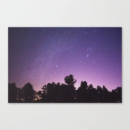 Where the Sky Meets the Trees Canvas Print