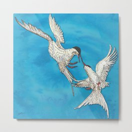 Arctic Terns Metal Print