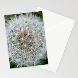 Dandelion clock Stationery Cards