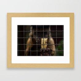 Let Me Out! Framed Art Print