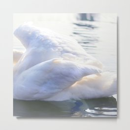 royal abstraction Metal Print