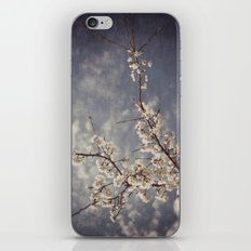 White Blossom iPhone & iPod Skin
