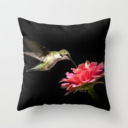 Hummingbird V Throw Pillow